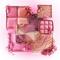 237 SW-35-BS-16-Still Life Product Photographer Dennis Pedersen advertising editorial creative fashion style cosmetics beauty makeup blush eye shadow cheeks compact crumble crush break powder dust pink tone shade estee lauder rimmel glow