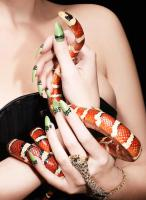 278 COS-65 Still life product photographer Dennis Pedersen advertising editorial Creative nail polish gel beauty cosmetic makeup varnish snake hand model jewellery gold diamon sparkle ping bling ring necklace