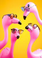 008 Still Life Product Photographer Dennis Pedersen Fashion Sunglasses Funny Flamingo Stylist Magazine Creative